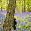 Boy in the Bluebell Wood by Mark Thompson