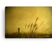 Land of Stillness Canvas Print