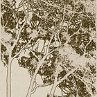 Sepia Trees - An Autumn Odyssey by William Southers
