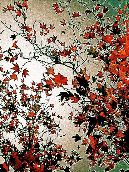 Leaves In Flight by Julie Marks