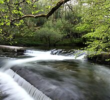 River Camel Weir by cwwphotography