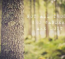 Not all those who wander are lost by netza