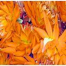 Les Fleurs by Mark Ross