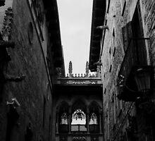 Barcelona - The Gothic Quarter  by Andrea Mazzocchetti