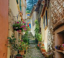 A narrow street in Provence village by Patrick Morand