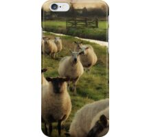 Along The Canal iPhone Case/Skin