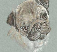 Pug dog pastel portrait by jdportraits