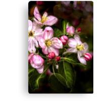 Michigan's Blooms  Canvas Print