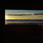 View from the Wollongong pavillion window by Bryan Cossart