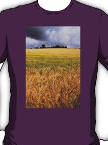 Drumlin Delight T-Shirt