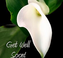 Get Well Card with White Calla Lily by Sheryl Kasper