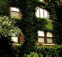 greenery by jensinerumps