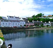 Portree Harbour by Tom Gomez