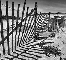Provincetown Dunes in Black and White by Philip James Filia