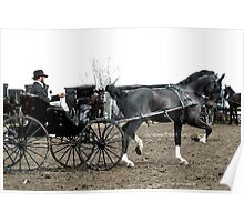 Black Horse and Carriage Poster