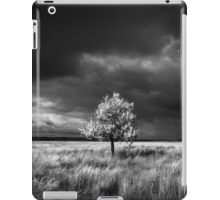 Storm Is Coming iPad Case/Skin