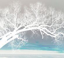 End of December by Janet Gosselin