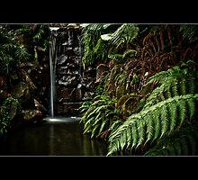 Autumn Falls by Samantha Cole-Surjan