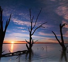 Lake Bonney Sunrise by KathyT