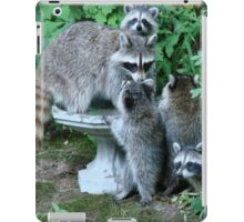 Raccoon Mom with 4 Kits iPad Case/Skin