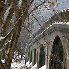 Juniata Bridge by Adam Mattel