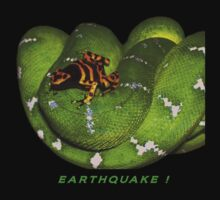 EARTHQUAKE! by webdog
