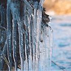 Ice Tight by trand07