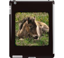 Babe in the Grass  iPad Case/Skin