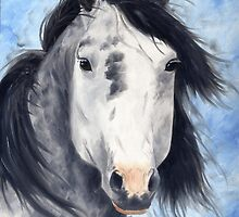 Dapple Grey Mustang Stallion by artbysas