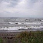 Rainy Surf by deb cole
