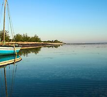 Blue dhow in paradise by jacojvr