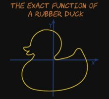 Harry Potter The exact function of  a rubber duck by Al-King