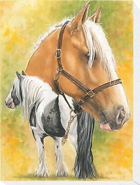 Irish Cob by BarbBarcikKeith