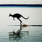 Kangaroo Jump. by Jinx