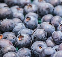 A Bounty of Blueberries by Nicole Petegorsky