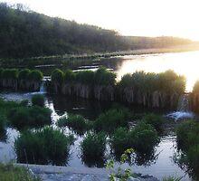 Beaver Dam at Summit Lake by bangogirl