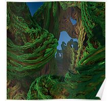 Rain Forest 1 Poster