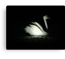 stone swan Canvas Print