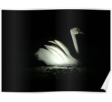 stone swan Poster