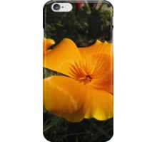 California Poppy iPhone Case/Skin