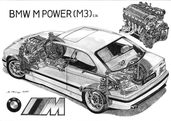 BMW M3 (e36) Cutaway by Steve Pearcy