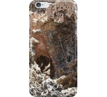 Shoalwater Rock iPhone Case/Skin