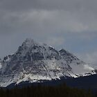 Mt Fitzwilliam by Kathi Arnell