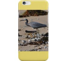 Bird, Werrong Beach, Australia 2014 iPhone Case/Skin