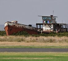 Not A Happy Boat, Tooradin, Victoria, Australia 2014 by muz2142