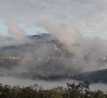 Misty Morning on Canarvon Gorge by Donna Linton-Keane
