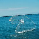 A Fishermens net by Amber Finan