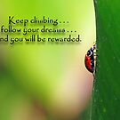 Keep climbing . . . by Bonnie T.  Barry