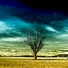Lonely tree. by Victor Pugatschew