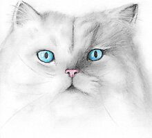 Pretty Kitty by Juanita Bishop